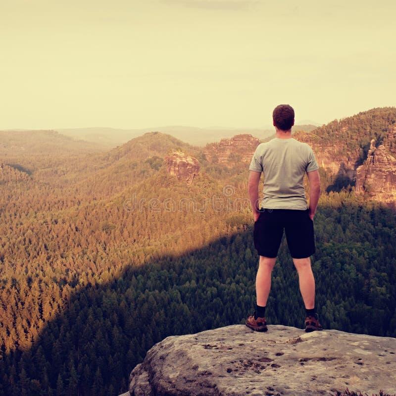 Volwassen wandelaar in grijs overhemd en donkere broek Lange mens op de piek van zandsteenklip het letten neer op aan bosvallei stock foto's