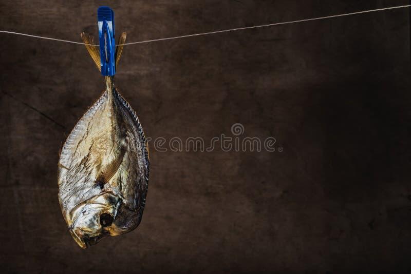 Vomer affumicato del pesce immagine stock libera da diritti