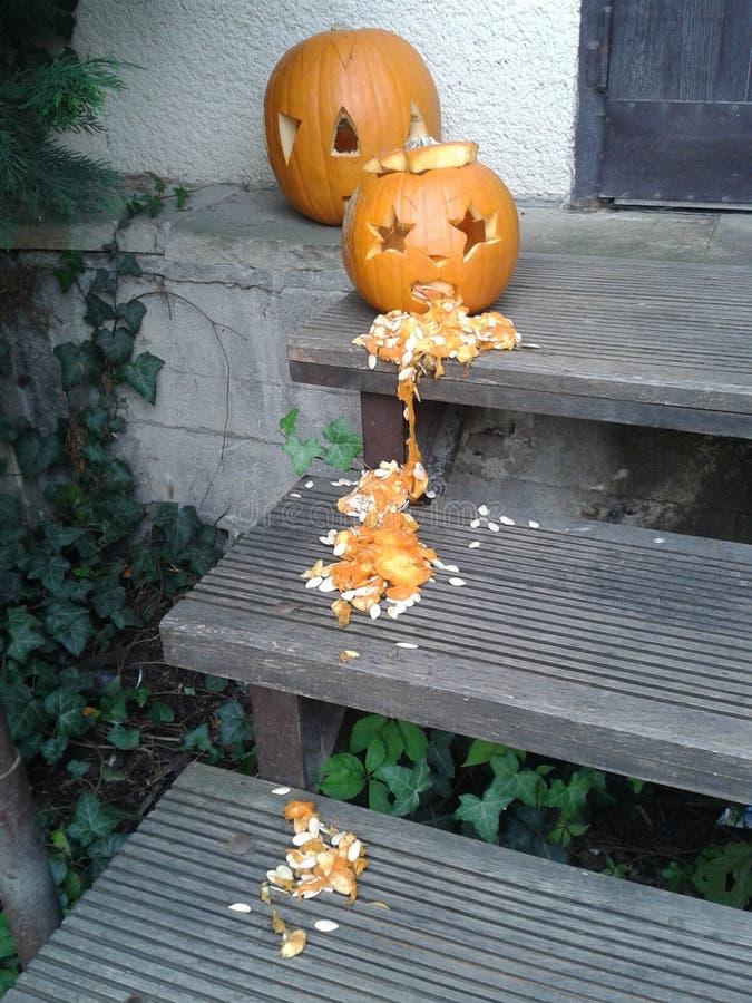 Vomiting pumpkin. Halloween holiday symbol royalty free stock image