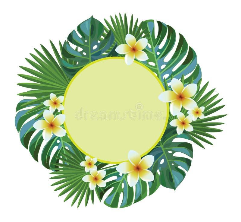 Von der Blumenfeldserie Tropische Blätter und Blumen lizenzfreie abbildung