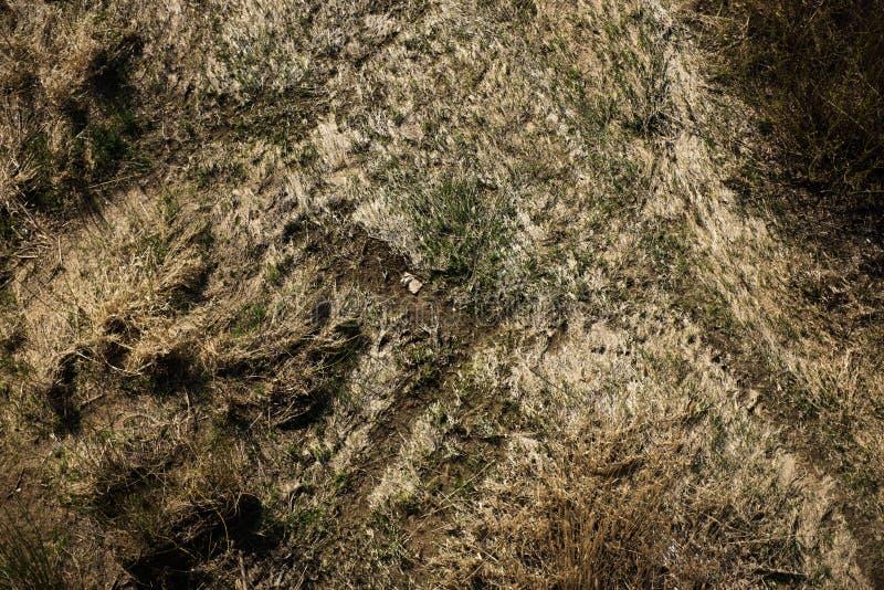 Von der Luftdraufsicht, Landschaftsfr?hlingspanorama von kleinem ruhigem Fluss am sonnigen Tag stockfotos