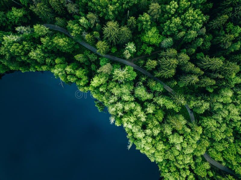 Von der Luftdraufsicht der Landstraße im grünen Sommerwald und im blauen See L?ndliche Landschaft in Finnland stockbilder