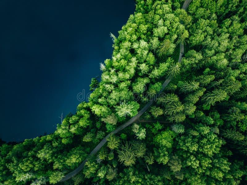 Von der Luftdraufsicht der Landstraße im grünen Sommerwald und im blauen See L?ndliche Landschaft in Finnland stockfotografie