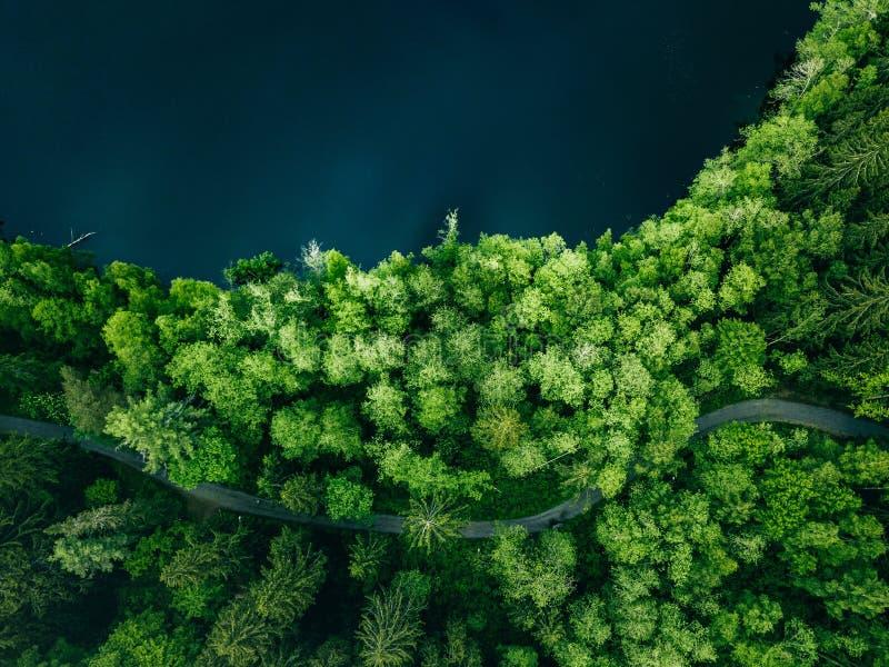 Von der Luftdraufsicht der Landstraße im grünen Sommerwald und im blauen See L?ndliche Landschaft in Finnland lizenzfreie stockfotografie