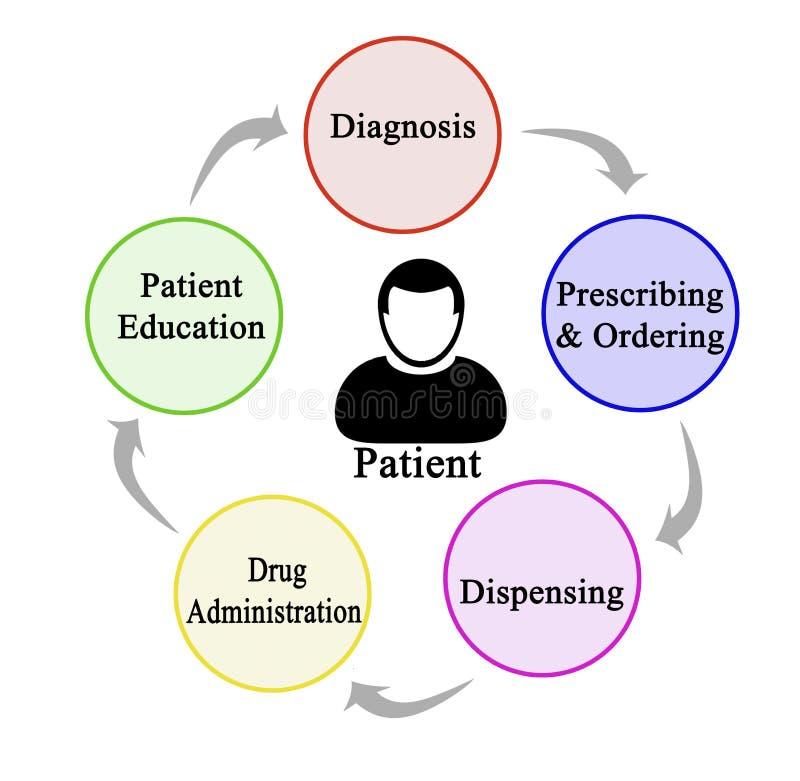Von Diagnose zu Patientenschulung stockfoto