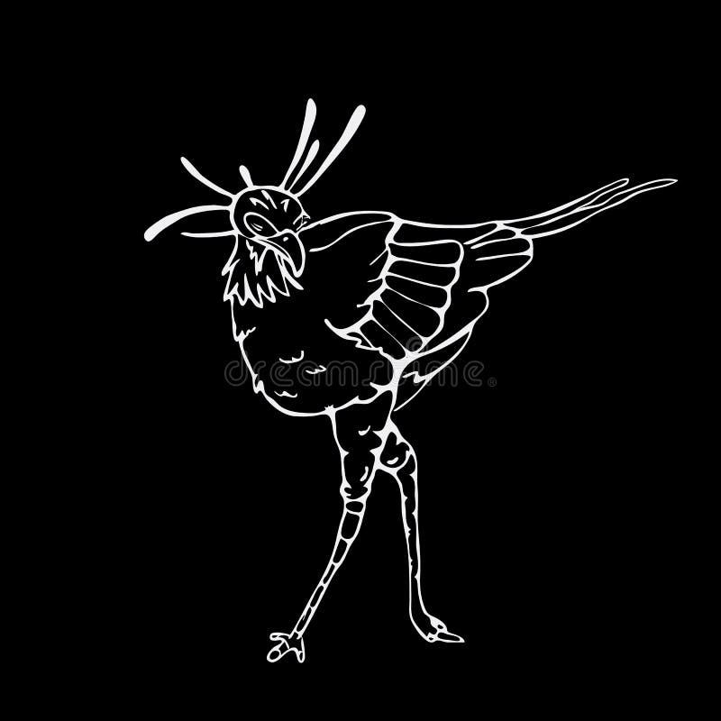 Von Hand gezeichnete Bleistiftgraphiken, Sekretärvogel, Adler, Falke, Fischadler vektor abbildung