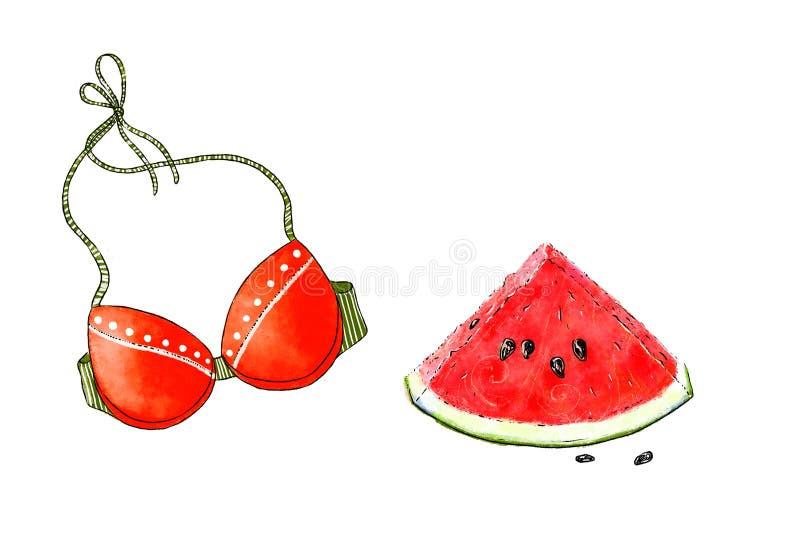 Von Hand gezeichnete Illustration Colorfu der neuen Scheibe der Wassermelone und der Spitze des Strandbadeanzugs Helle Sommerattr lizenzfreie abbildung