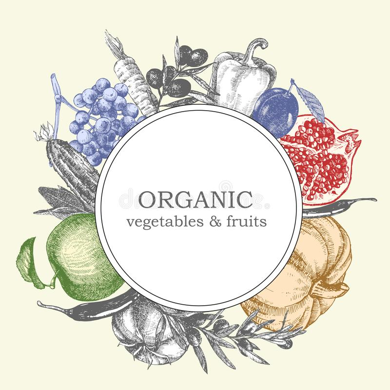 Von Hand gezeichnete Illustration des Gemüses und der Früchte Sonnenkollektor und Zeichen für alternative Energie Vektor stockfotografie