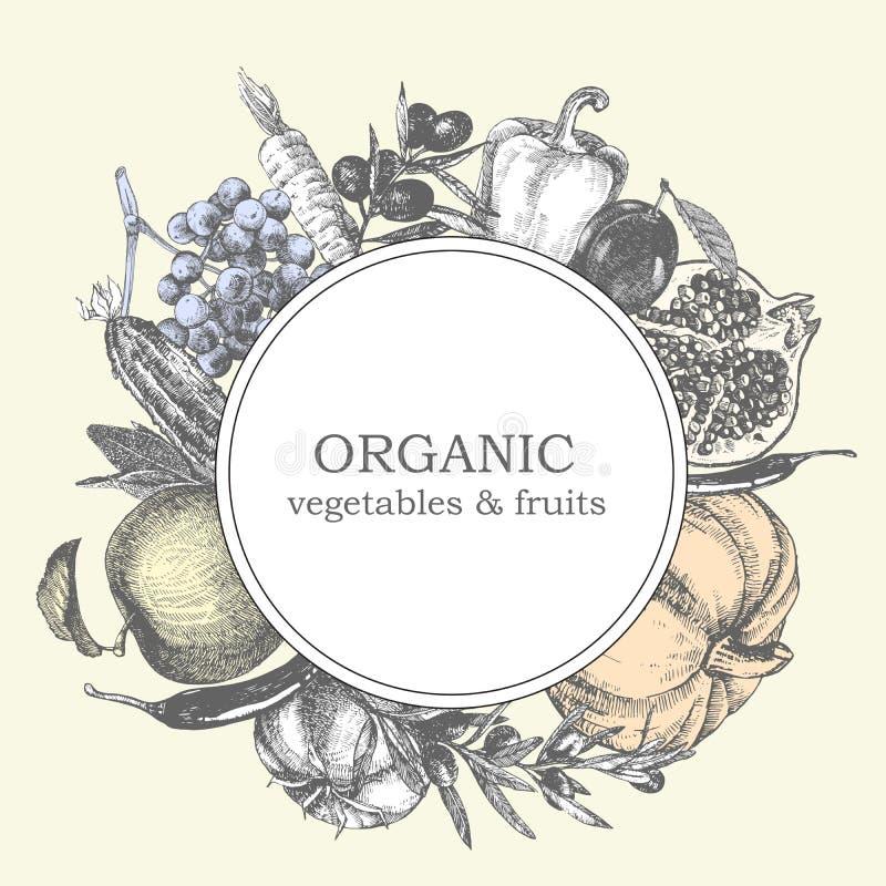 Von Hand gezeichnete Illustration des Gemüses und der Früchte Sonnenkollektor und Zeichen für alternative Energie Vektor stockfotos