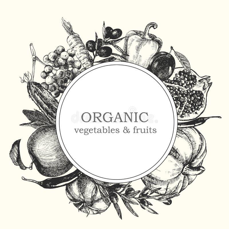 Von Hand gezeichnete Illustration des Gemüses und der Früchte Sonnenkollektor und Zeichen für alternative Energie Vektor stockbild