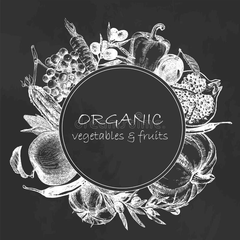 Von Hand gezeichnete Illustration des Gemüses und der Früchte Sonnenkollektor und Zeichen für alternative Energie Vektor lizenzfreie stockfotos