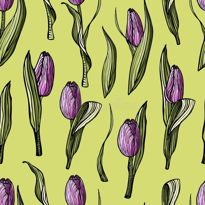 Von Hand gezeichnete lila Tulpen des nahtlosen Musters vektor abbildung