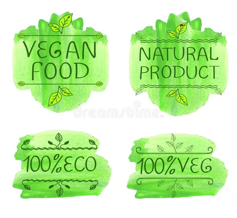 Von Hand gezeichnete typografische Elemente für Design Bioprodukte und Lebensmittel des strengen Vegetariers Watecolor-Grünspritz stock abbildung