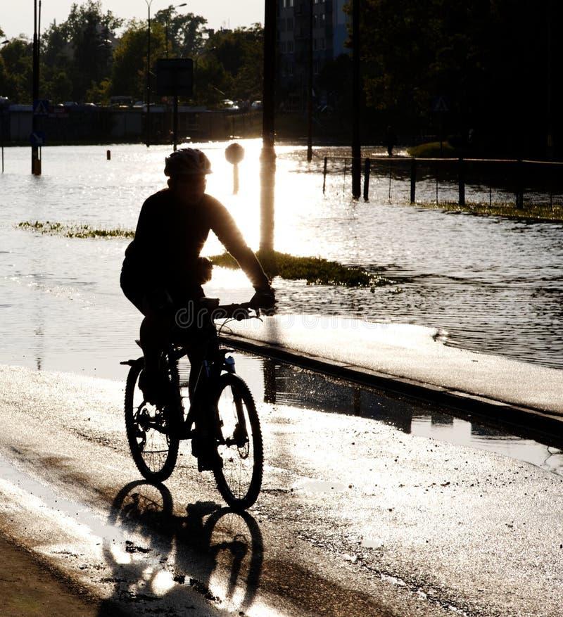 Von hinten beleuchteter Radfahrer lizenzfreies stockfoto