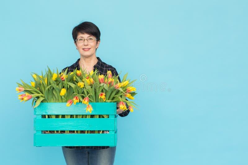 Von mittlerem Alter tragende Gläser des glücklichen Frauenfloristen mit Kasten Tulpen auf blauem Hintergrund mit Kopienraum stockfotografie