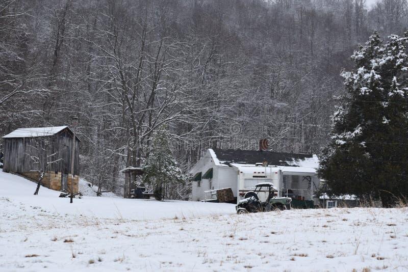 Von West Virginia im Wald leben stockfoto