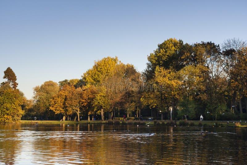Vondelpark在阿姆斯特丹 库存照片