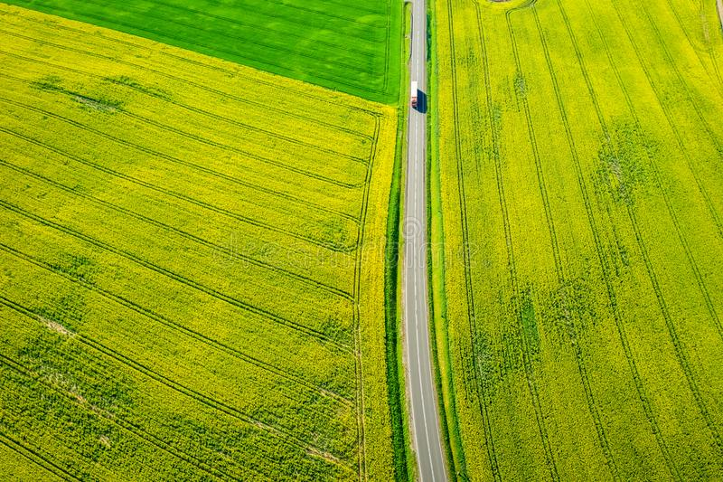 Voo acima dos campos amarelos e verdes da violação no dia ensolarado imagem de stock
