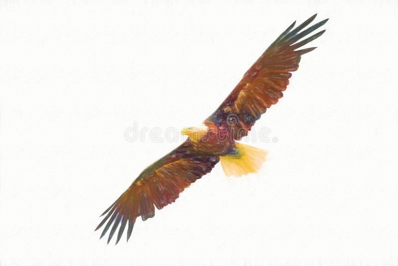 Voo americano da águia com as asas abertas largas ilustração royalty free
