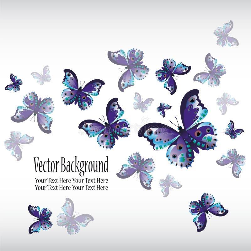 Voo azul colorido bonito da borboleta em um branco abstraia o fundo ilustração do vetor