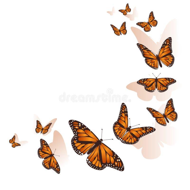 Voo bonito da borboleta em um fundo do c?rculo Vetor ilustração royalty free
