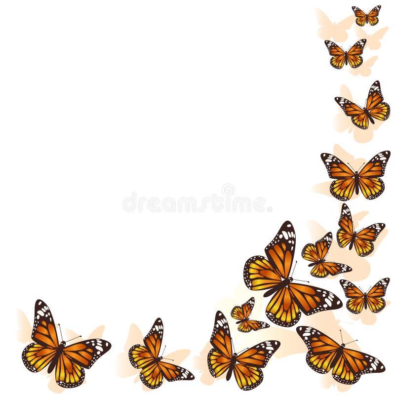 Voo bonito da borboleta em um fundo do c?rculo Vetor ilustração stock