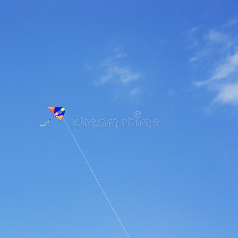 Voo colorido do papagaio no céu azul brilhante imagens de stock royalty free