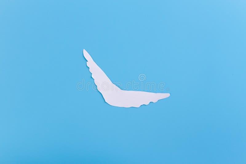 Voo da pomba do branco no c?u imagens de stock