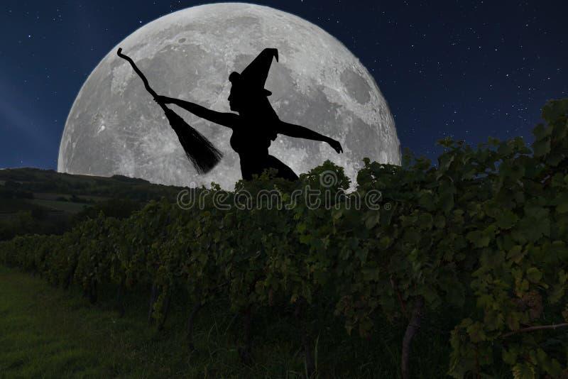 Voo da silhueta da bruxa de Dia das Bruxas com cabo de vassoura Lua cheia Vin fotografia de stock royalty free