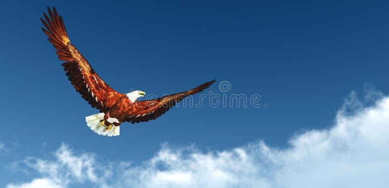 Voo de Eagle acima das nuvens fotografia de stock