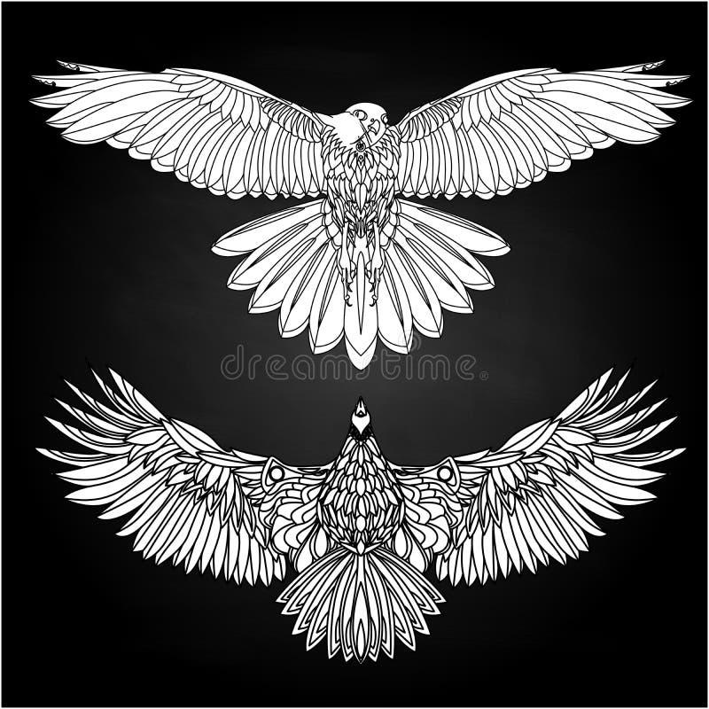 Voo de Eagle na ilustração branca p?ssaro ilustração stock