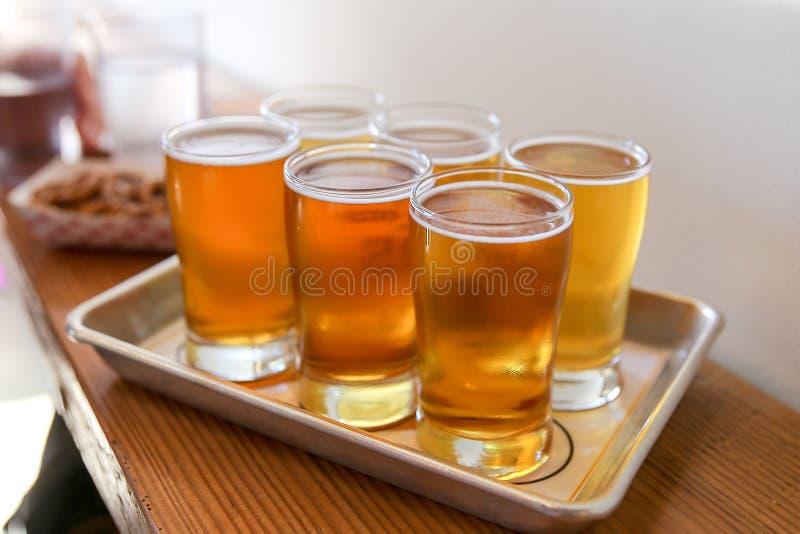 Voo do gosto da cerveja do ofício imagem de stock