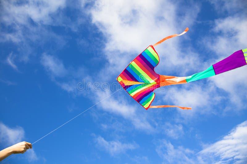 Voo do papagaio no céu foto de stock