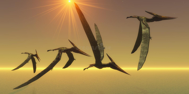 Voo do réptil de Pteranodon ilustração stock