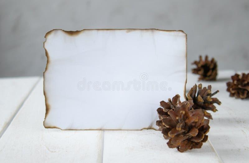 Voor witte houten raad, brandde een blad van document langs de randen, boskegels rond de randen Het verlaten van ruimte voor teks stock foto