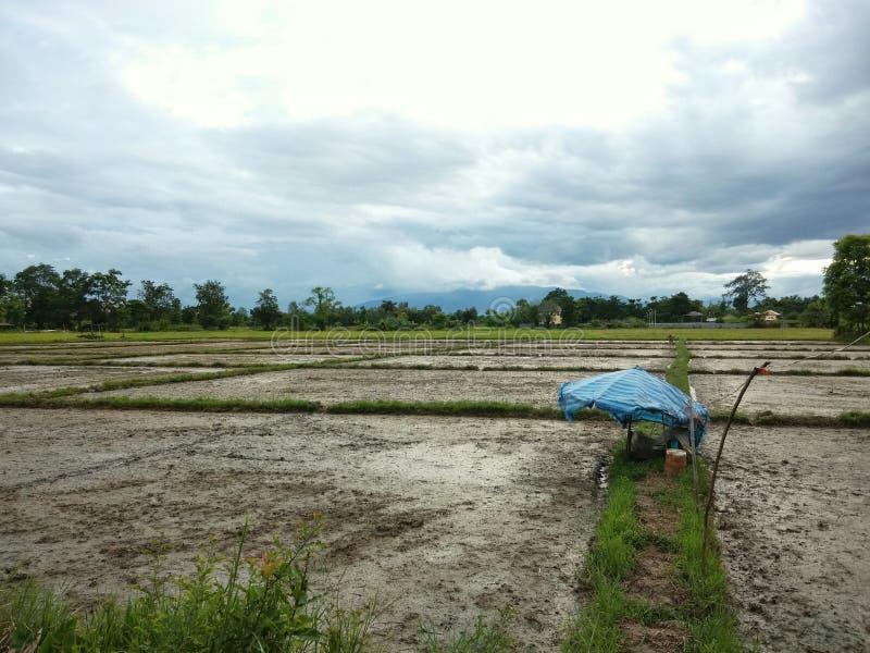 Voorbereid gebied voor nieuw seizoen van landbouw stock afbeelding