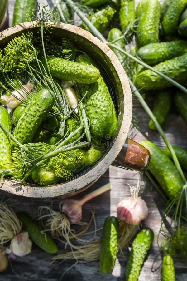Voorbereiding van low-salt ingelegde komkommers stock foto's