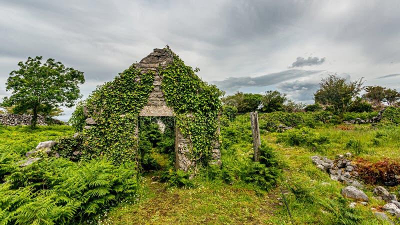 Voorgevel van een geruïneerd middeleeuws die huis met installaties in het midden van weide wordt behandeld royalty-vrije stock foto's