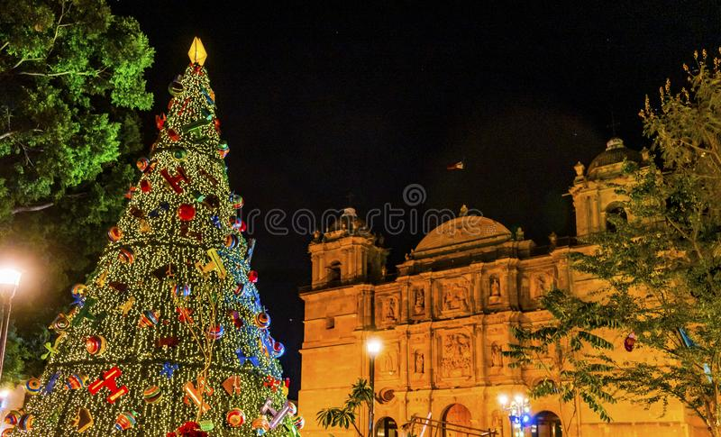 Voorgevelkerstboom Dame Assumption Cathedral Church Oaxaca Mexico royalty-vrije stock foto