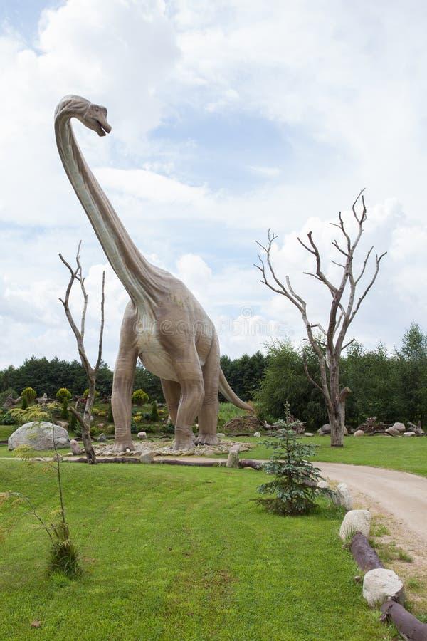 Voorhistorische diplodocus stock foto