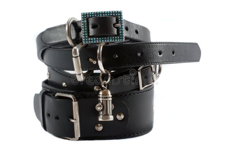 Voorraad van zwarte halsbanden royalty-vrije stock afbeelding