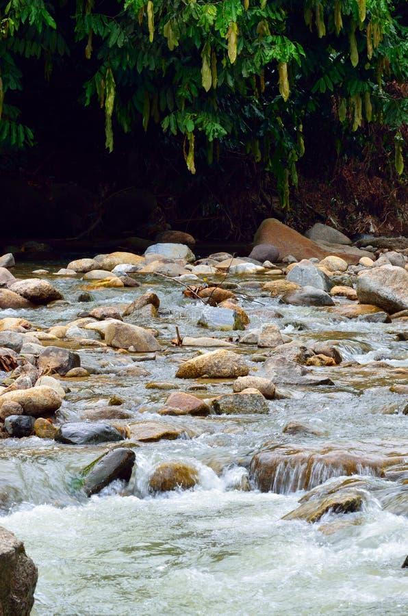 Voorraadbeeld van Waterval in een Maleise tropische wildernis royalty-vrije stock afbeelding