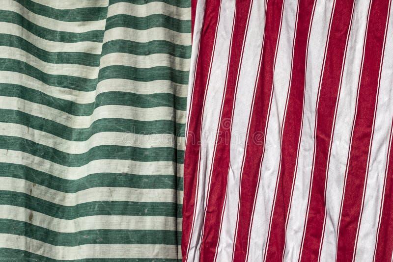 Voorspruit van gehangen groene en rode patroonbladen stock foto's
