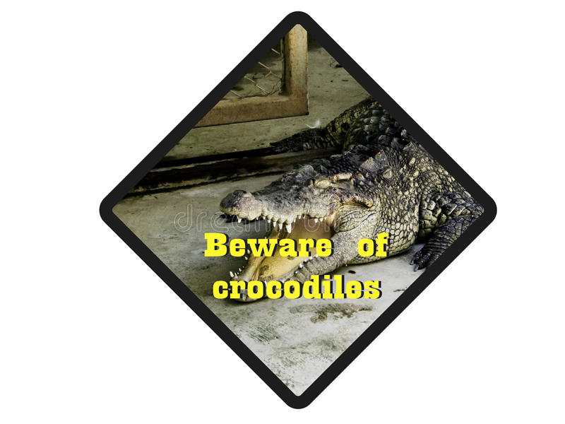 Voorzichtig zijn ofcrocodiles stock afbeeldingen