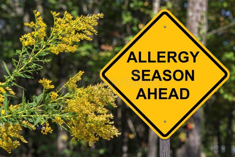 Voorzichtigheid - Allergieseizoen vooruit royalty-vrije stock foto's
