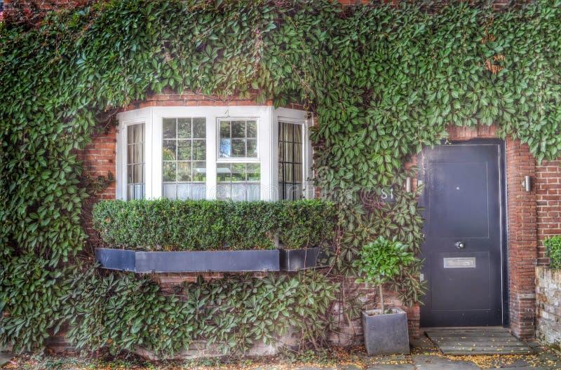Voorzijde van het huis door groene klimop wordt behandeld die stock afbeeldingen