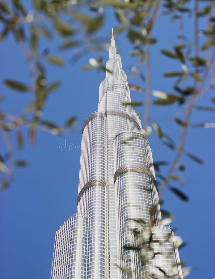 Vor dem höchsten Turm lizenzfreie stockfotos
