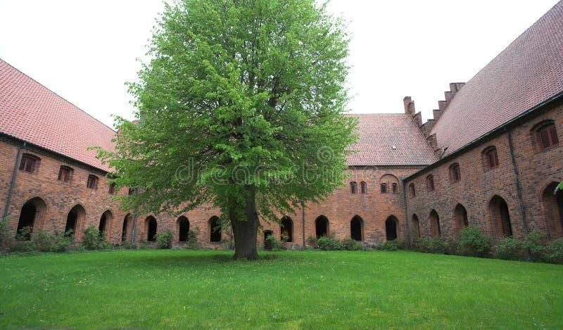 Vor Frue修道院,一个卡默利特平纹薄呢修道院在Elsinore Helsing 图库摄影