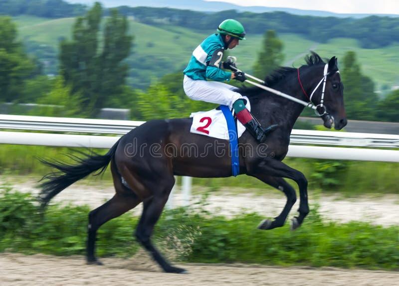 Vor Pferdenrennen lizenzfreie stockbilder