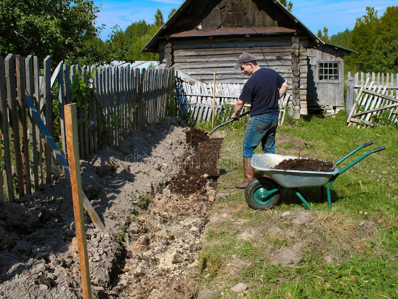 Vorbereitung von Betten für das Pflanzen von Himbeeren Kompost wird als Düngemittel angewendet lizenzfreie stockbilder